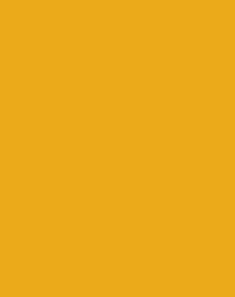 site e-commerce - boutique en ligne